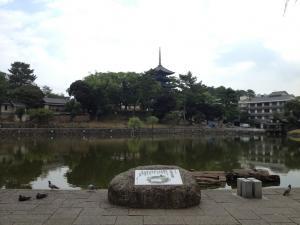 sarusawa0810_convert_20120810103235.jpg