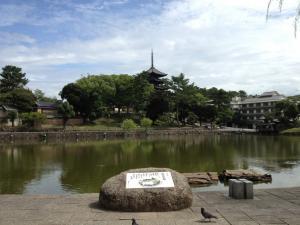 sarusawa0829_convert_20120829105137.jpg
