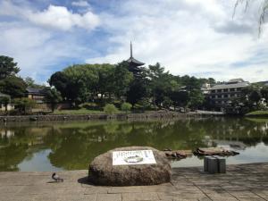 sarusawa0909_convert_20120909104315.jpg
