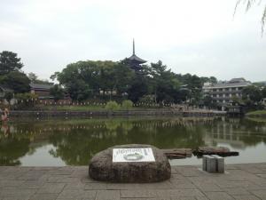 sarusawa0929_convert_20120929102317.jpg