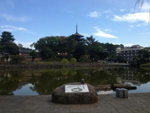 sarusawa1014_convert_20121014111448.jpg