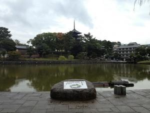 sarusawa1017_convert_20121017102808.jpg