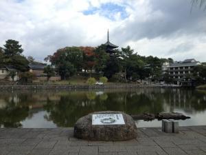 sarusawa1029_convert_20121029104027.jpg