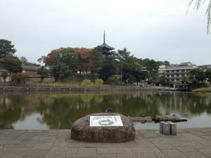 sarusawa1030_convert_20121030110956.jpg