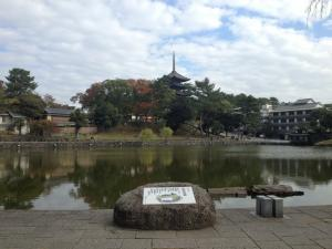 sarusawa1103_convert_20121103112141.jpg
