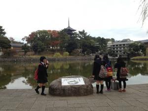 sarusawa1105_convert_20121105110609.jpg