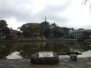 sarusawa1106_convert_20121106105400.jpg