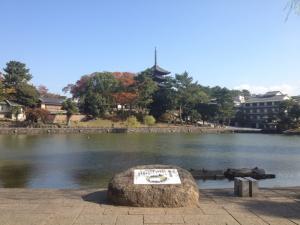 sarusawa1107_convert_20121107110030.jpg