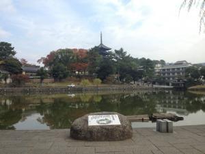 sarusawa1109_convert_20121109112427.jpg
