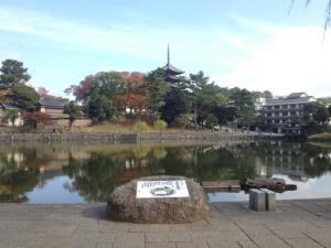 sarusawa1110_convert_20121110112013.jpg