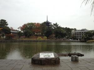 sarusawa1111_convert_20121111111229.jpg