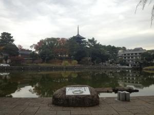 sarusawa1112_convert_20121112111738.jpg
