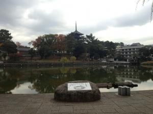 sarusawa1113_convert_20121113110956.jpg