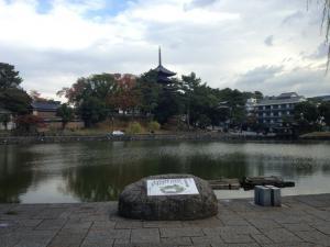 sarusawa1114_convert_20121114110538.jpg