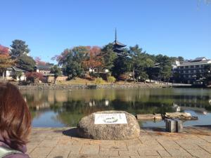 sarusawa1116_convert_20121116115118.jpg