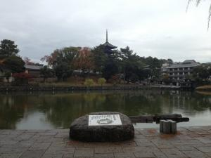 sarusawa1117_convert_20121117112333.jpg
