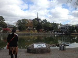 sarusawa1121_convert_20121121111251.jpg