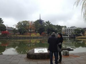 sarusawa1123_convert_20121123111812.jpg