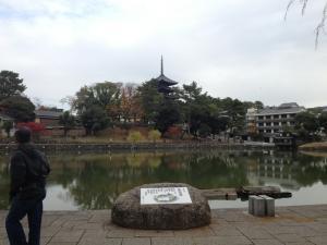 sarusawa1124_convert_20121124105947.jpg