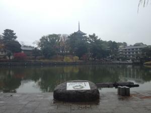 sarusawa1126_convert_20121126112130.jpg