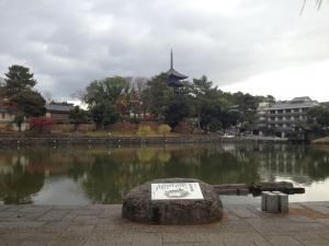 sarusawa1201_convert_20121201111212.jpg