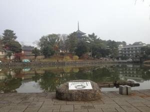 sarusawa1203_convert_20121203113445.jpg