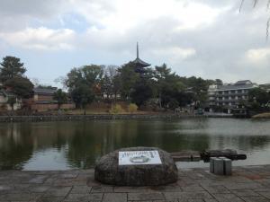 sarusawa1204_convert_20121204105816.jpg
