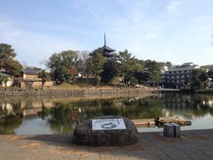 sarusawa1207_convert_20121207110523.jpg
