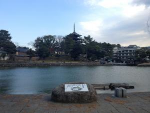 sarusawa1208_convert_20121208112048.jpg