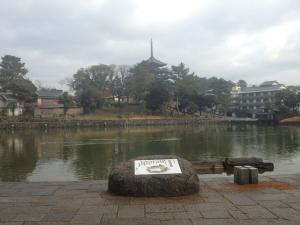 sarusawa1215_convert_20121215112707.jpg
