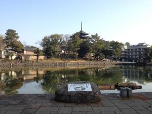 sarusawa1223_convert_20121223113721.jpg
