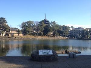 sarusawa1224_convert_20121224111318.jpg