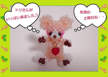花ブ20121018-1