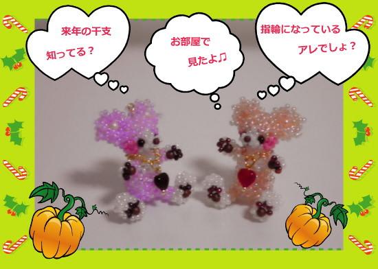 花ブ20121023-3