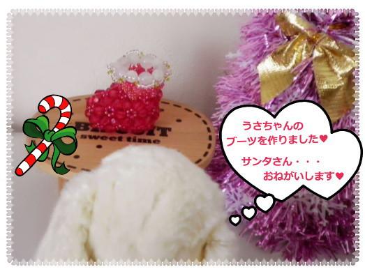 花ブ20121214-1