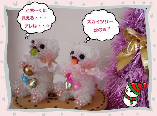 花ブ20121214-4