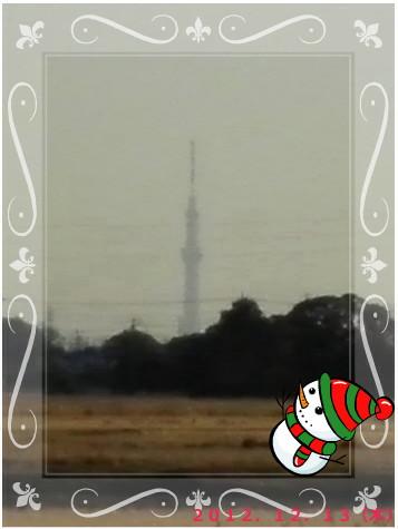花ブ20121214-6