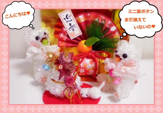 花ブ20121231-01