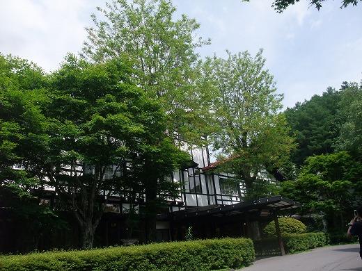 花屋20120716 125