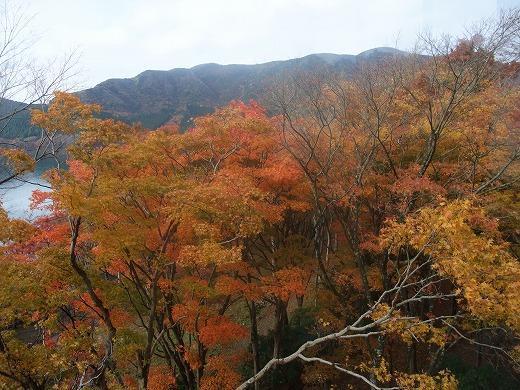 早雲閣2箱根201211 070