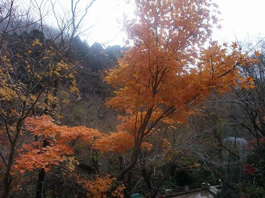 早雲閣2箱根201211 121