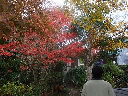 早雲閣2箱根201211 123