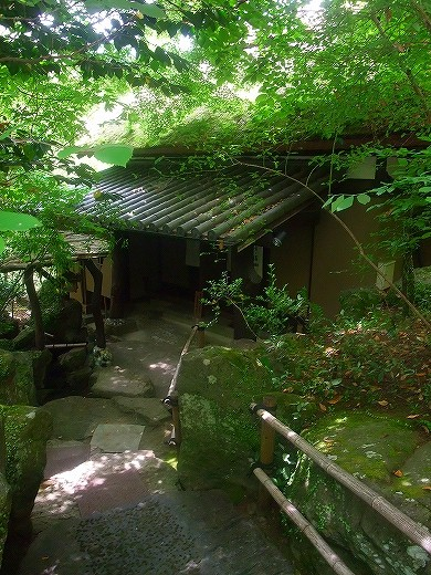 kumamotokumamoto 244