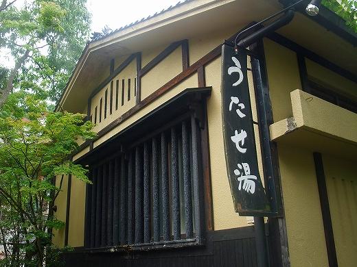 kumamoto220130625kumamoto2 059