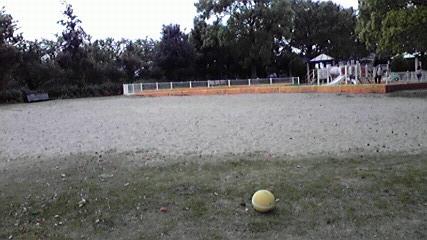 GW公園 (2)