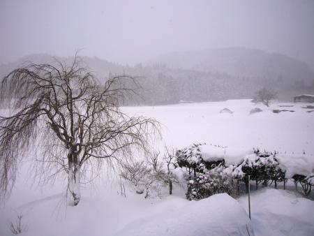 吹雪です~