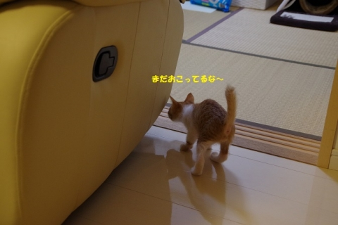 IMGP5583②