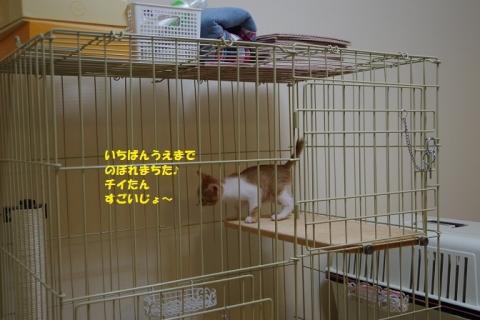 IMGP5637②