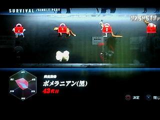 TOKYO JUNGLE 002