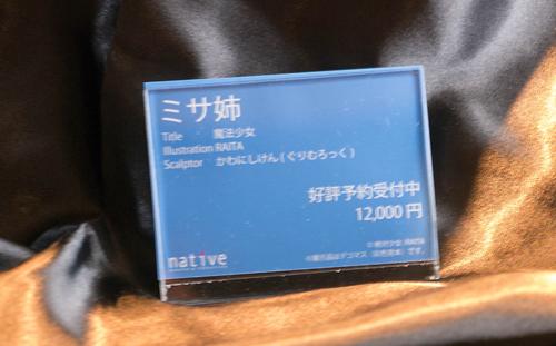 P1060510_500.jpg